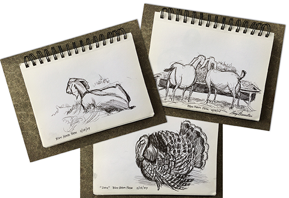 Sketch of goats and turkey