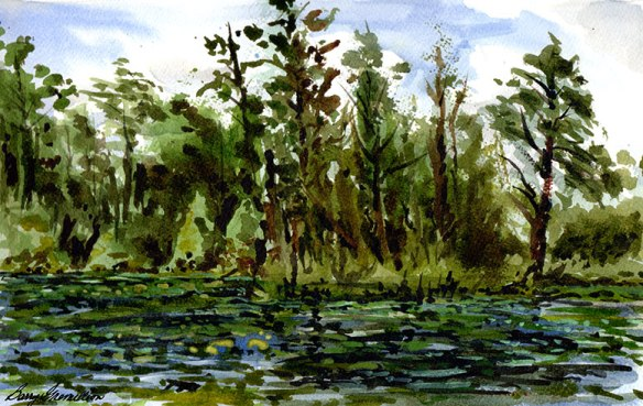 watercolor-Houston Arboretum